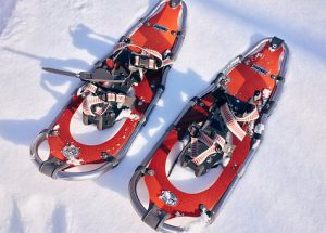 10 things to know about snowshoes